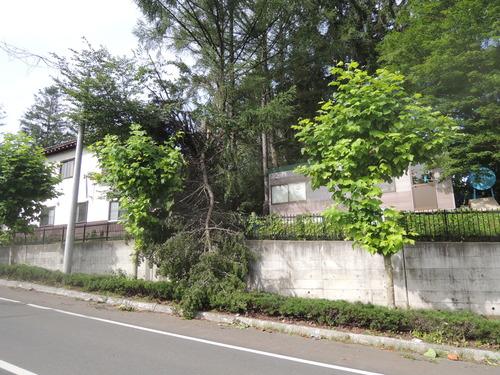 160820森のようちえん、台風8tuki 009.JPG